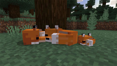 PS4 Minecraft Starter Collection screenshot featuring foxes laying around on grass